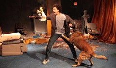 Eric Andre tickets at Fonda Theatre in Los Angeles
