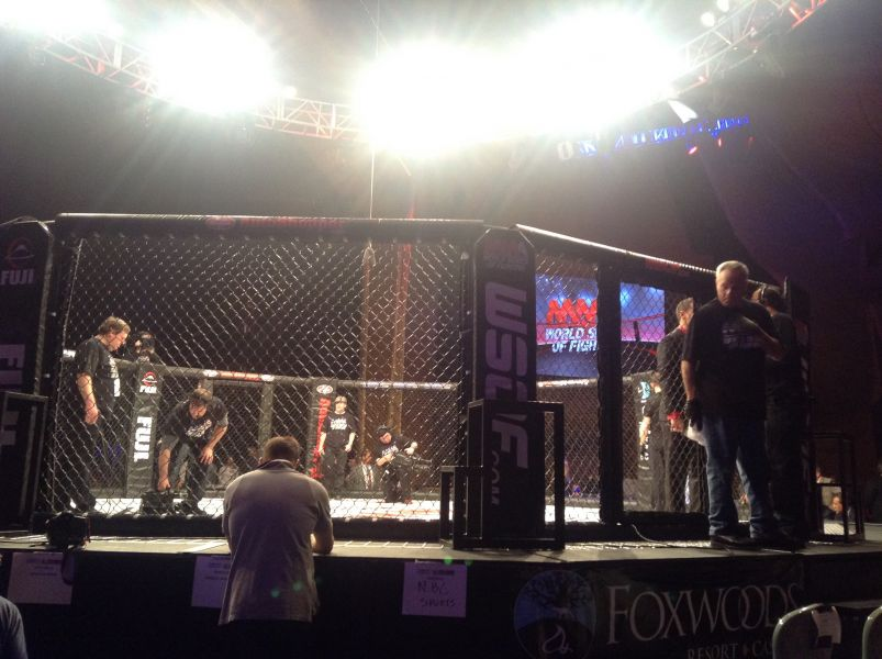 Rousimar Palhares defeated Jake Shields at WSOF 22