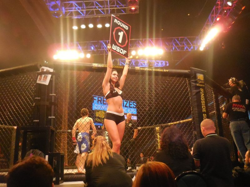 World Series of Fighting is heading to California this winter
