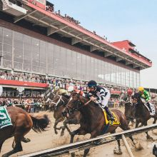 142nd Running of the Preakness Stakes tickets at Pimlico Race Course in Baltimore