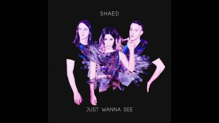 Interview: SHAED's Chelsea Lee on working with twins, Max and Spencer Ernst