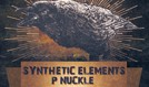 Synthetic Elements / P-Nuckle tickets at Gothic Theatre in Englewood