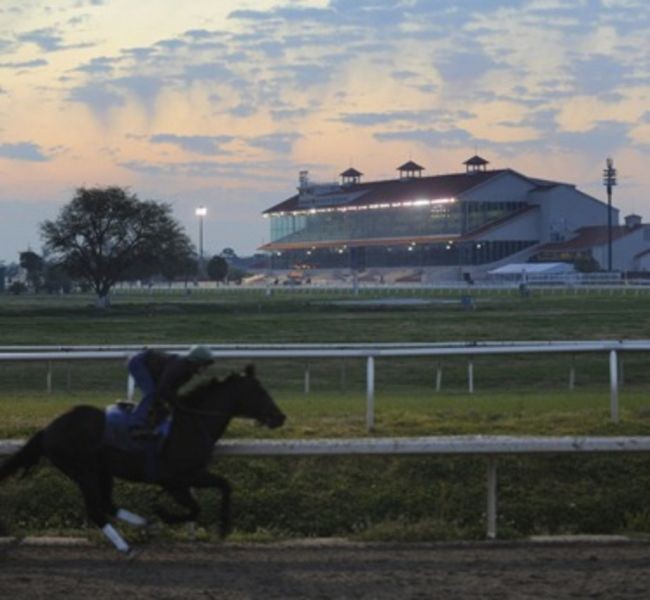 Guide to New Orleans Fair Grounds