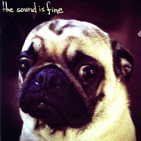 Interview with The Sound is Fine's Reed Adler