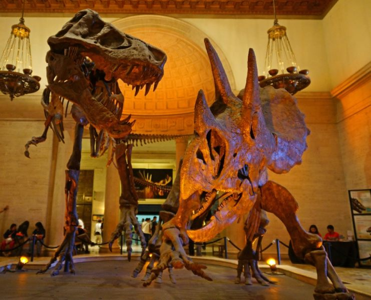 The best Los Angeles museums for the entire family