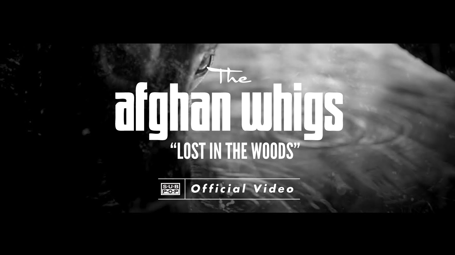 "Afghan Whigs' new video for ""Lost in the Woods"" & 2015 European tour dates"