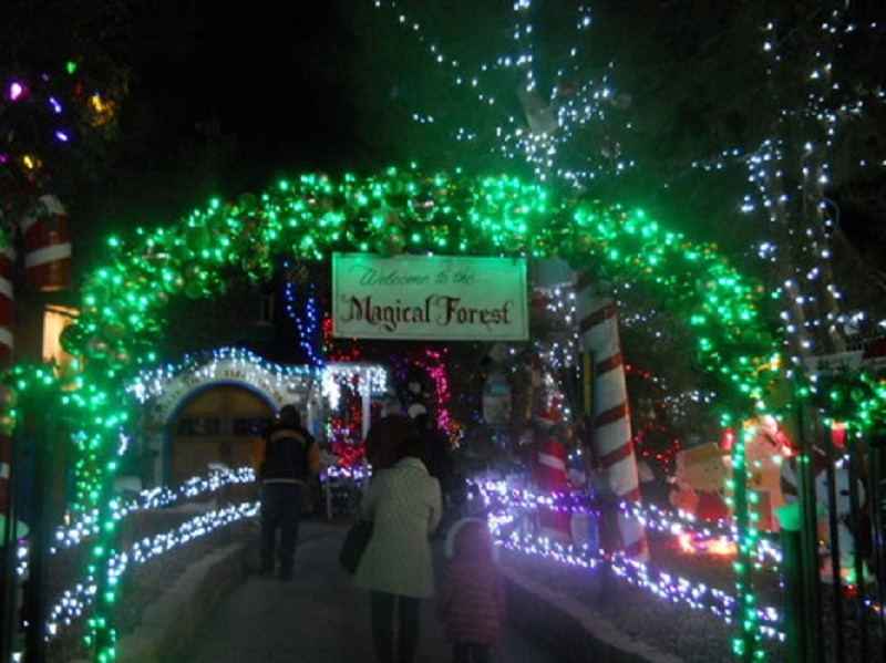top spots to volunteer in las vegas during the holidays - Las Vegas Christmas 2014