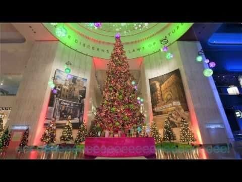 Where To Take Holiday Family Photos In Chicago