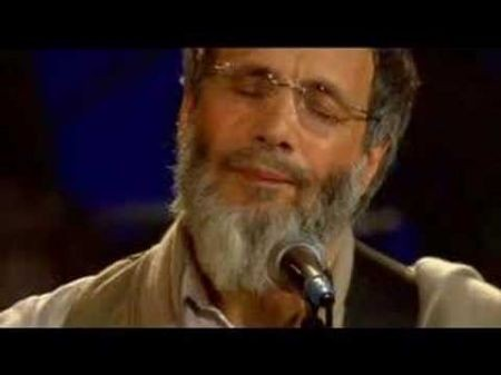 Cat Stevens rains over The Masonic: Mighty blows 'The Wind'