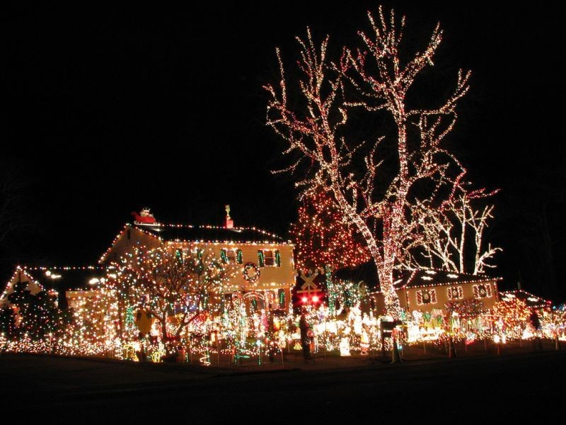 best places to see christmas lights in miami and ft lauderdale - Best Christmas Decorated Houses