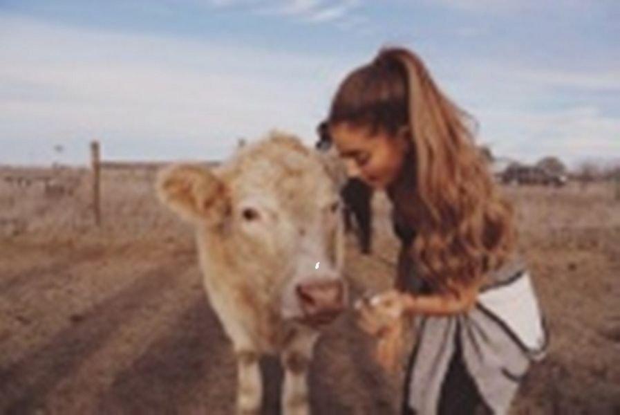 Ariana Grande visits PreetiRang Sanctuary