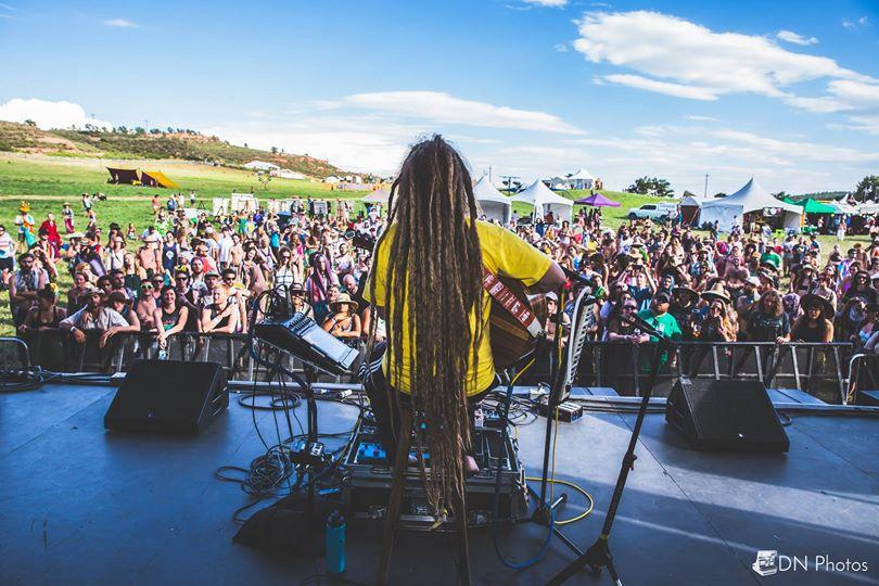 Mike Love Reggae