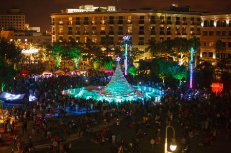 The palms will be alight in Palm Beach this Christmas