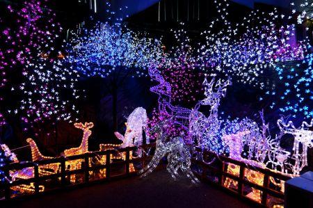 Detroit lights up for the Christmas season
