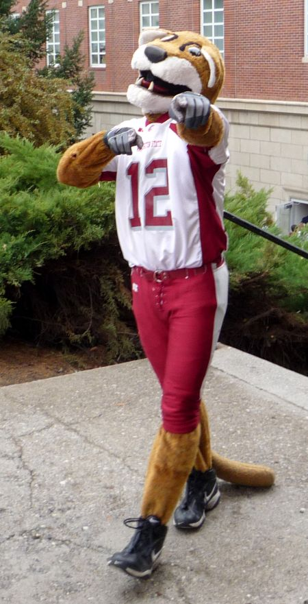 The Washington State mascot, Butch T. Cougar, is ready for the team's Holiday Bowl matchup on Tuesday night in San Diego against the Univers