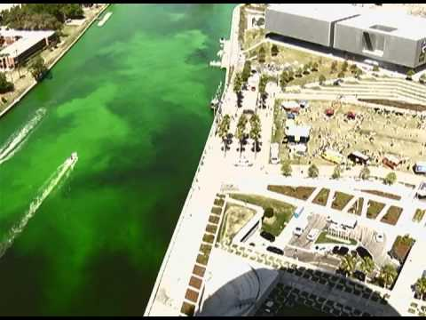 Best free family St. Patricks Day events in Tampa 2017