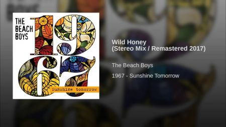 Review: The Beach Boys' '1967 – Sunshine Tomorrow' is as confusing as the original albums