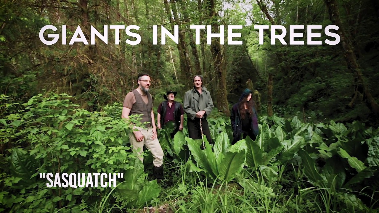 Nirvana's Krist Novoselic unveils new band Giants in the Trees with new single