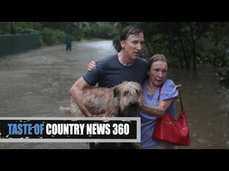 Miranda Lambert's MuttNation rescues 72 dogs on first day after Hurricane Harvey