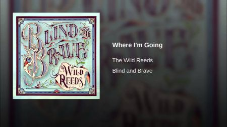 Indie folk outfit the Wild Reeds design fall tour