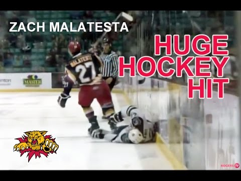 Atlanta Gladiators sign defenseman Zach Malatesta