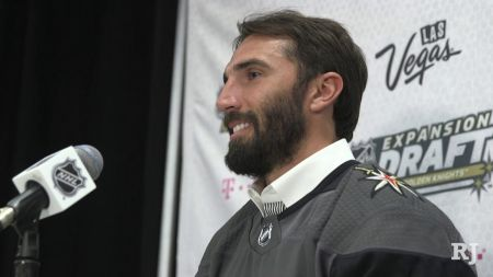 Vegas Golden Knights Player Profile: D Jason Garrison