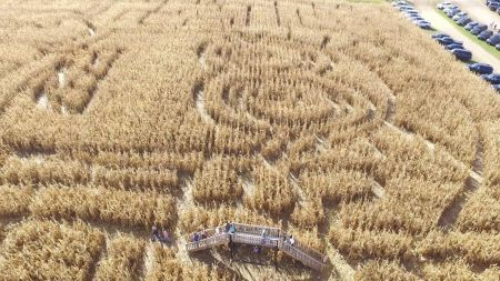 Corn mazes and pumpkin patches near Minneapolis and St. Paul 2017