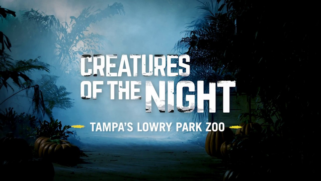 Hip hop radio stations in tampa fl - Halloween Events For Kids In Tampa St Pete And Sarasota 2017