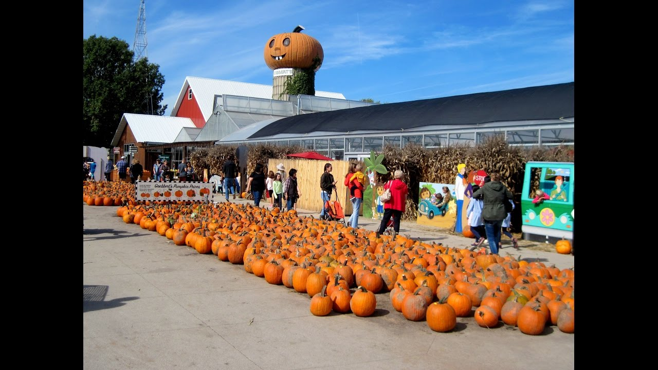 Corn mazes and pumpkin patches near Chicago 2017