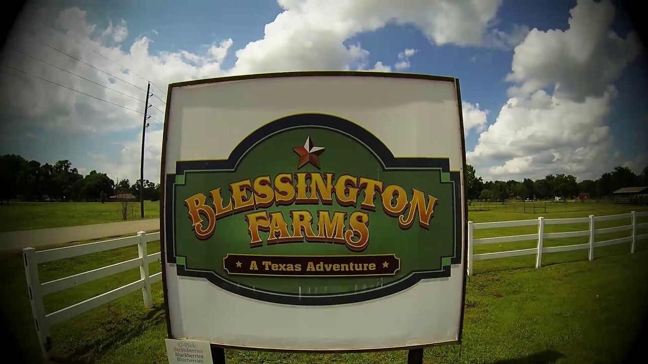 Corn mazes and pumpkin patches near Houston 2017