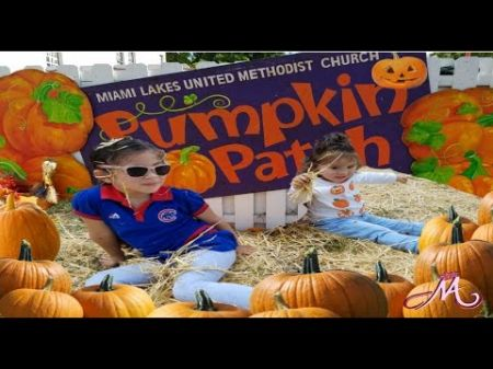 Corn mazes and pumpkin patches near Miami and Ft. Lauderdale 2017