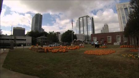 Corn mazes and pumpkin patches near Orlando, Daytona and Melbourne 2017