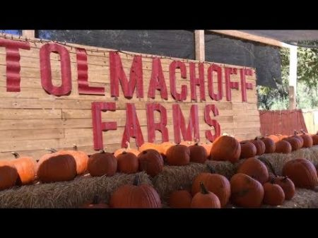 Corn mazes and pumpkin patches near Phoenix and Prescott 2017