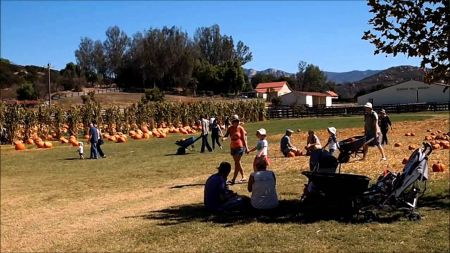 Corn mazes and pumpkin patches near San Diego 2017