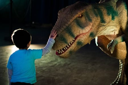 Dinosaur Time Trek: Shark Edition will be coming to Denver this December