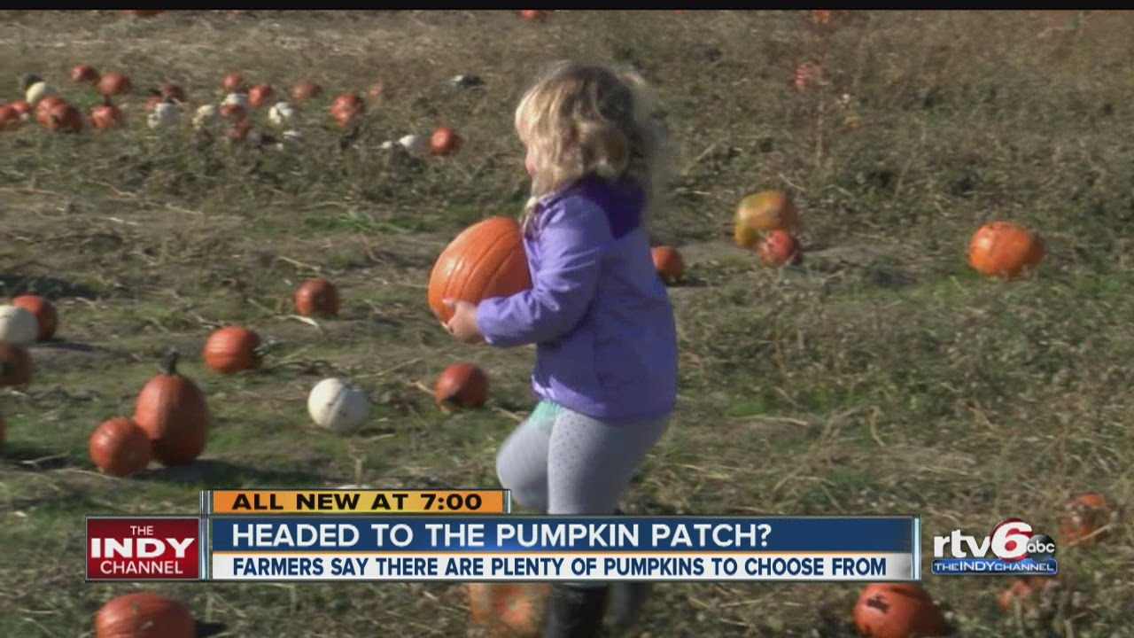 Corn mazes and pumpkin patches near Indianapolis 2017