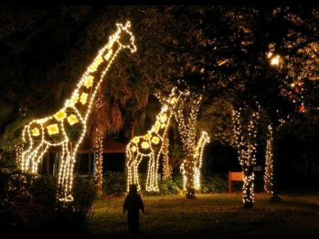 Where to see Christmas lights in Miami and Ft. Lauderdale 2017