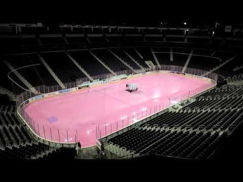 Atlanta Gladiators promote Hockey Fights Cancer Weekend