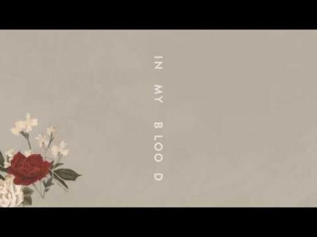 Listen: Shawn Mendes returns with new song 'In My Blood'