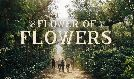 Flower of Flowers tickets at Theatre at Ace Hotel in Los Angeles