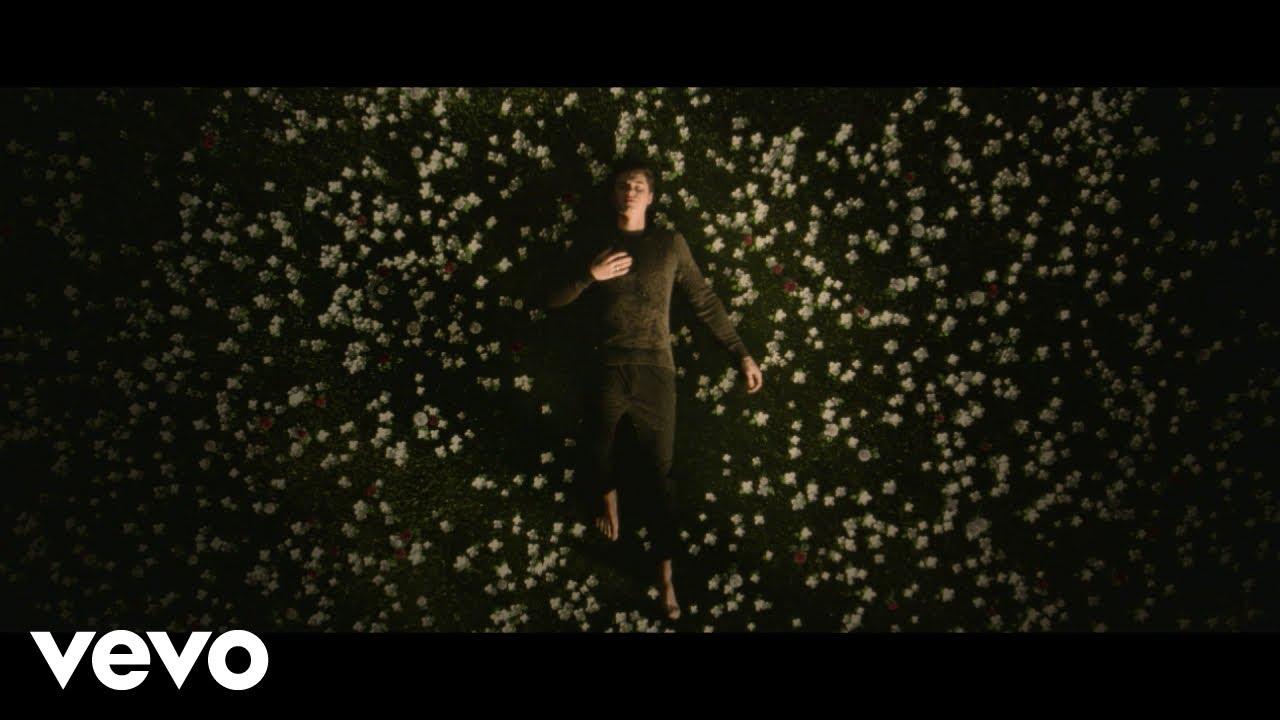 Shawn Mendes' self-titled album debuts at No. 1 on charts