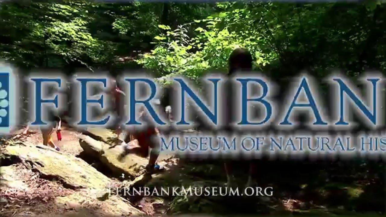 Atlanta Gladiators build relationship with Fernbank Museum