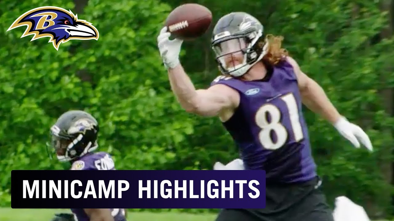 Baltimore Ravens 2018 team preview