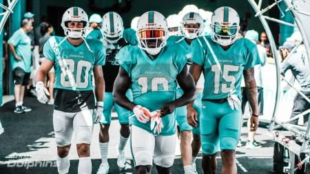 Miami Dolphins 2018 team preview