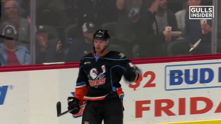 San Diego Gulls offer six mini-plans for the 2018-19 AHL regular season