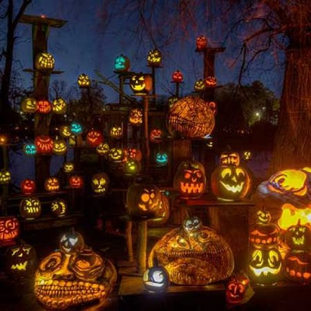 Jack-O-Lantern Spectacular at the Minnesota Zoo