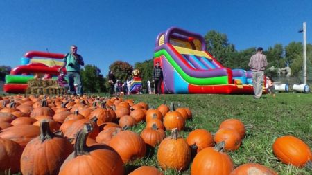 Corn mazes and pumpkin patches near Minneapolis and St. Paul 2018