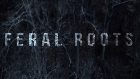 Watch: Rival Sons release official visualizer for new single 'Feral Roots'