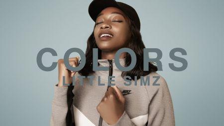 Little Simz announces select performances summer 2019