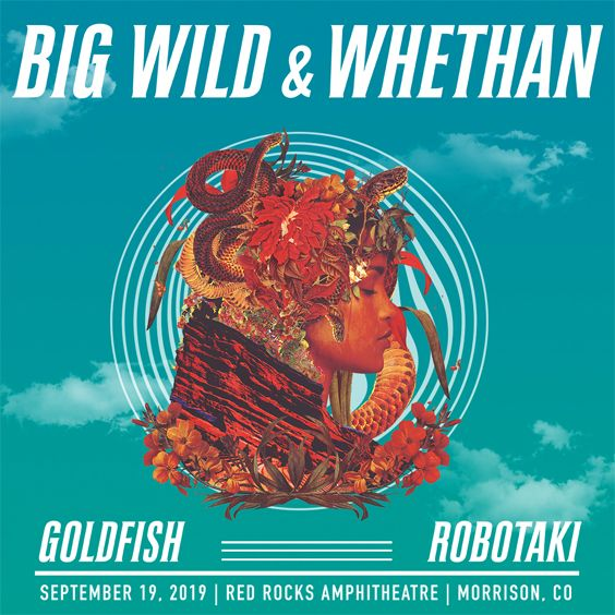Image for Big Wild / Whethan
